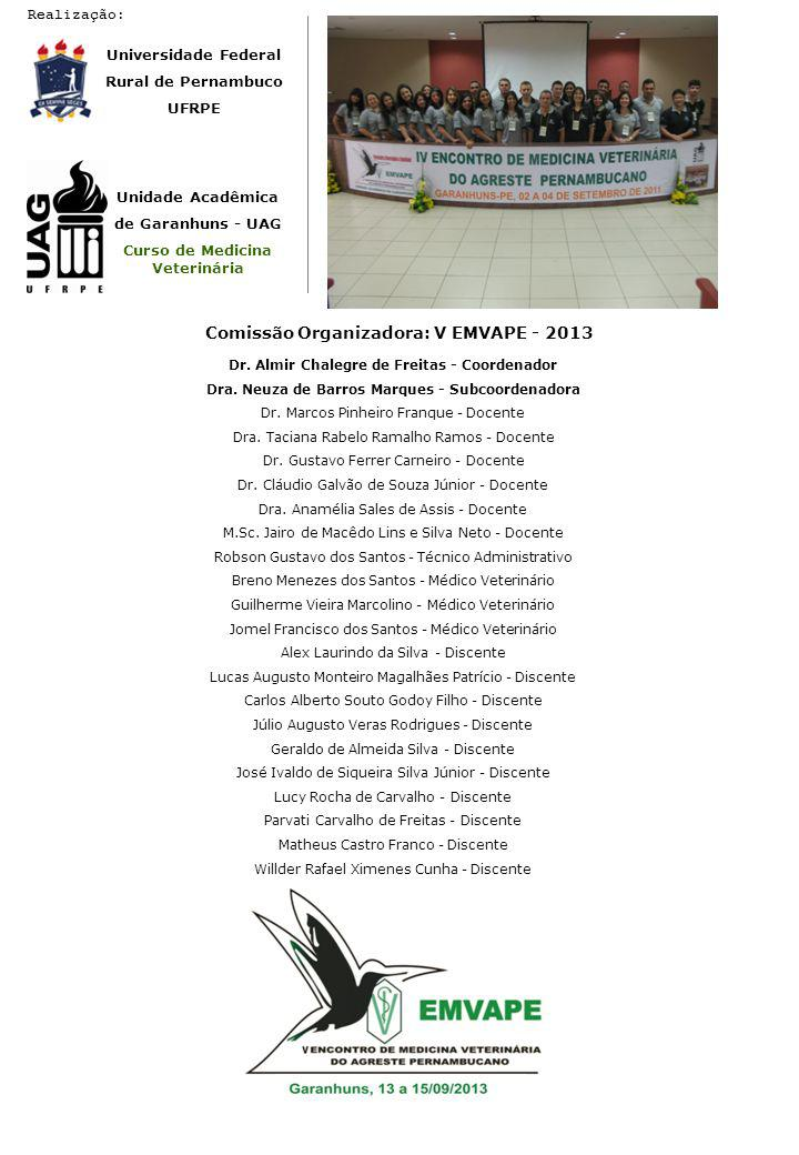 Comissão Organizadora: V EMVAPE - 2013