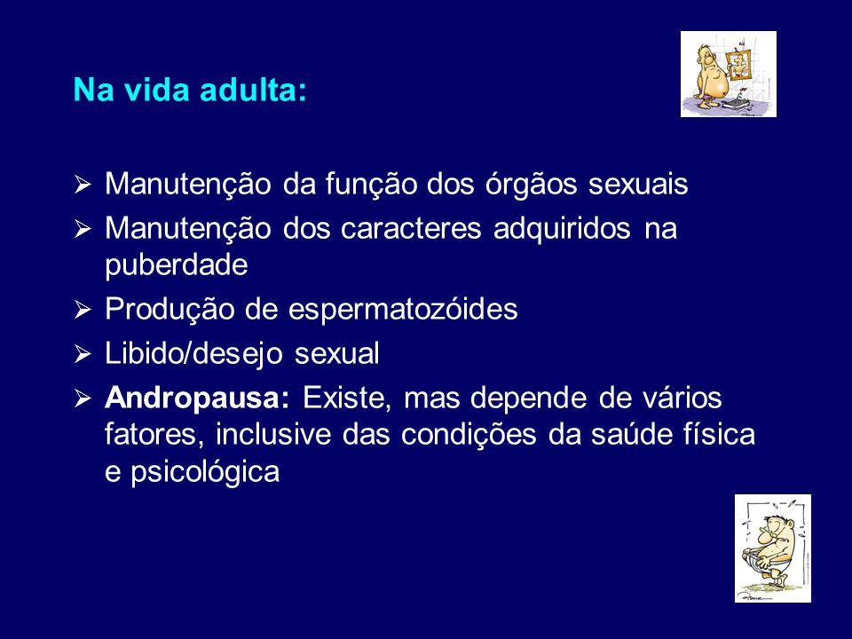 Na vida adulta: Manutenção da função dos órgãos sexuais