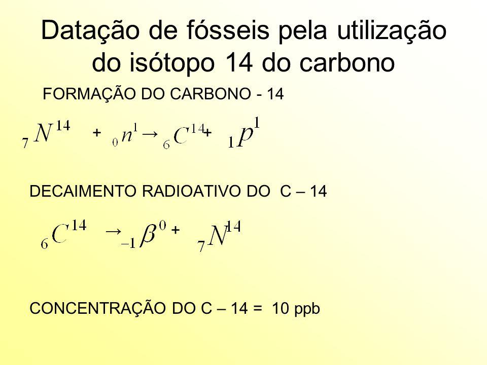 Datação de fósseis pela utilização do isótopo 14 do carbono