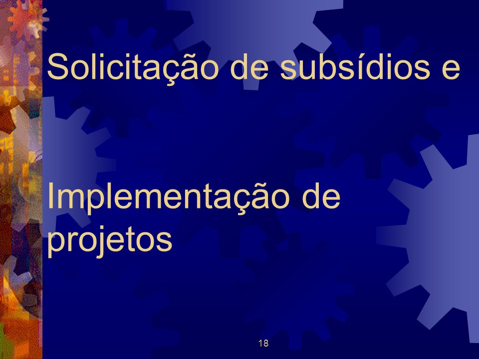 Solicitação de subsídios e Implementação de projetos