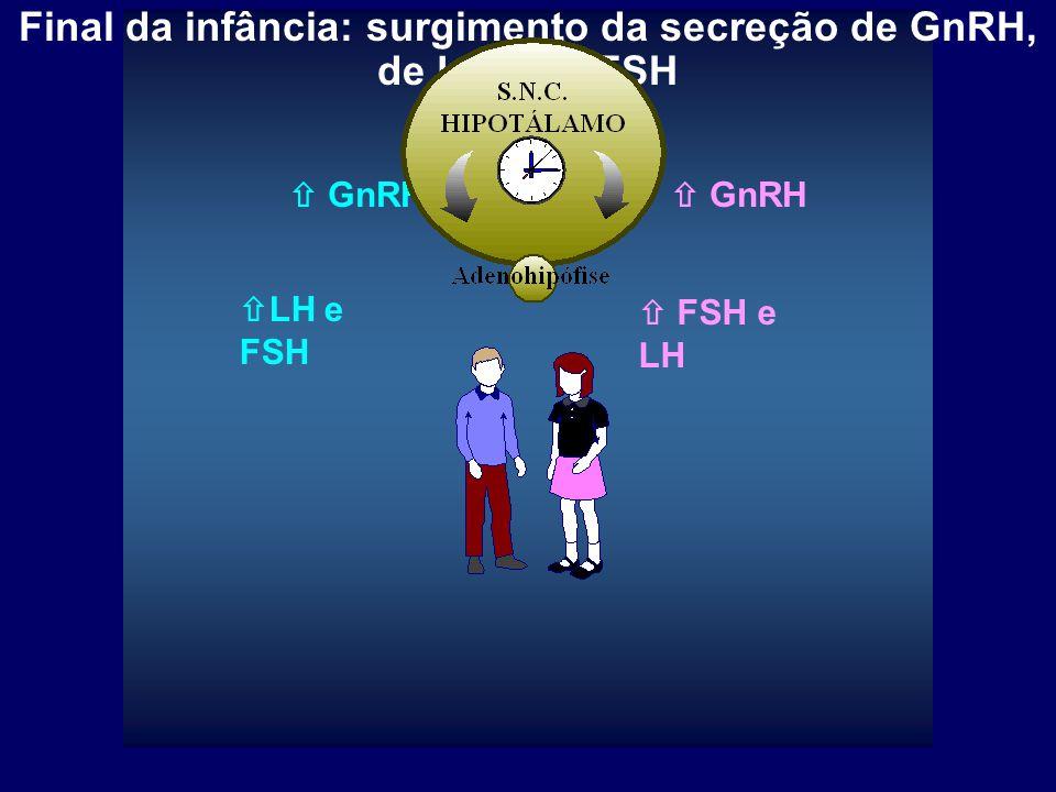 Final da infância: surgimento da secreção de GnRH, de LH e de FSH