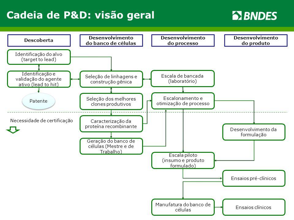 Cadeia de P&D: visão geral