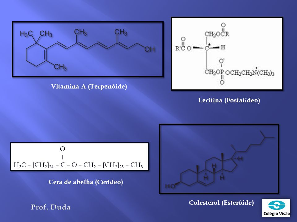 O Prof. Duda Vitamina A (Terpenóide) Lecitina (Fosfatídeo) ǀǀ