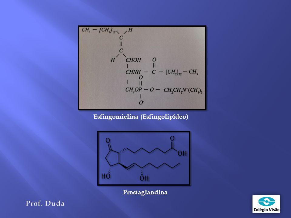 Esfingomielina (Esfingolipídeo)