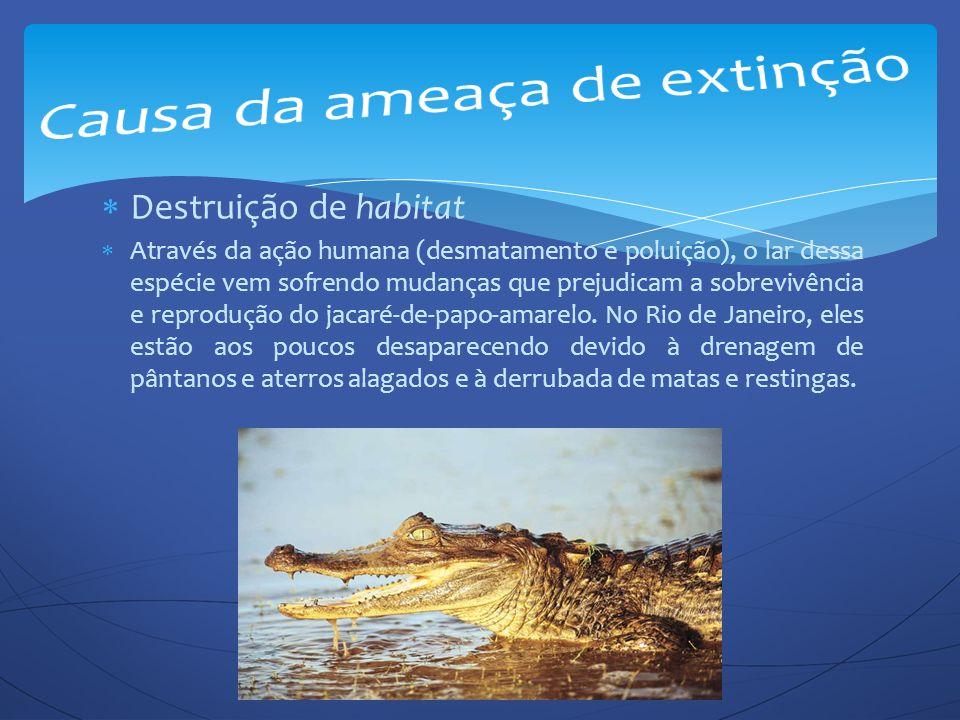 Causa da ameaça de extinção