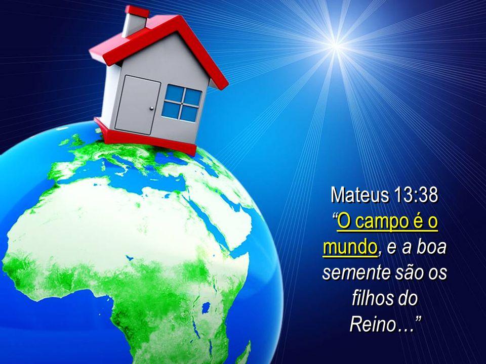 O campo é o mundo, e a boa semente são os filhos do Reino…