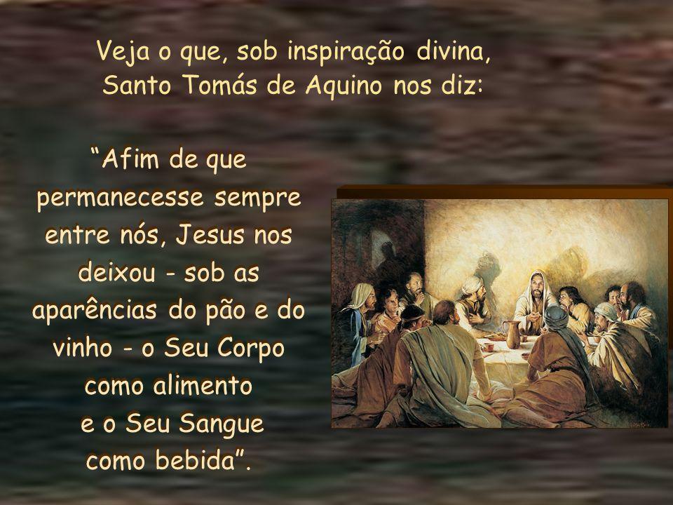 Veja o que, sob inspiração divina, Santo Tomás de Aquino nos diz: