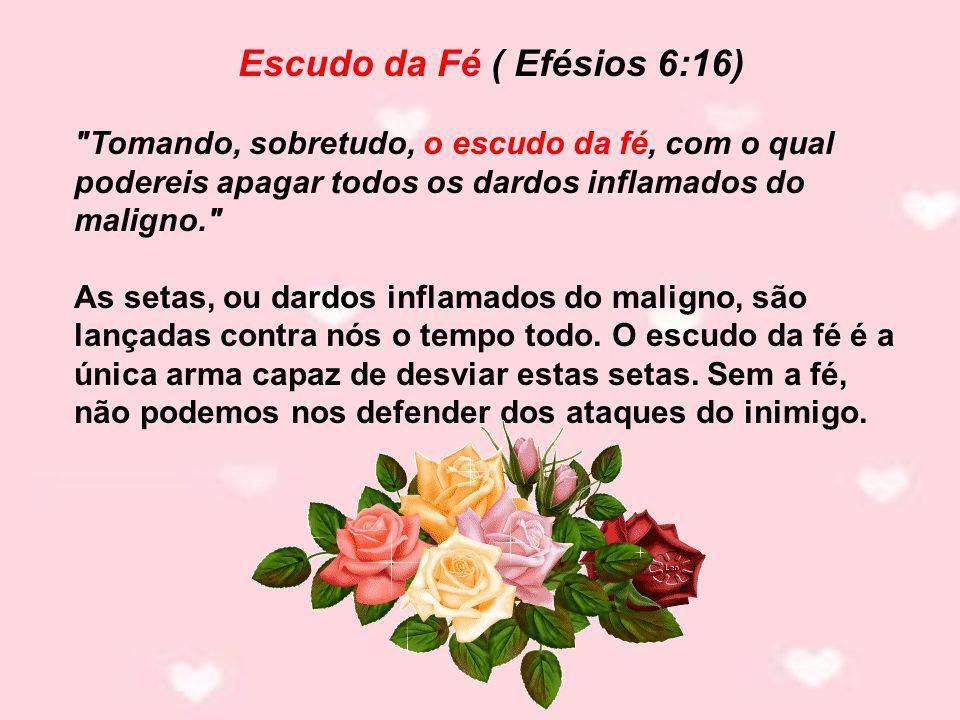 Escudo da Fé ( Efésios 6:16)