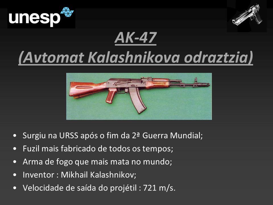 AK-47 (Avtomat Kalashnikova odraztzia)