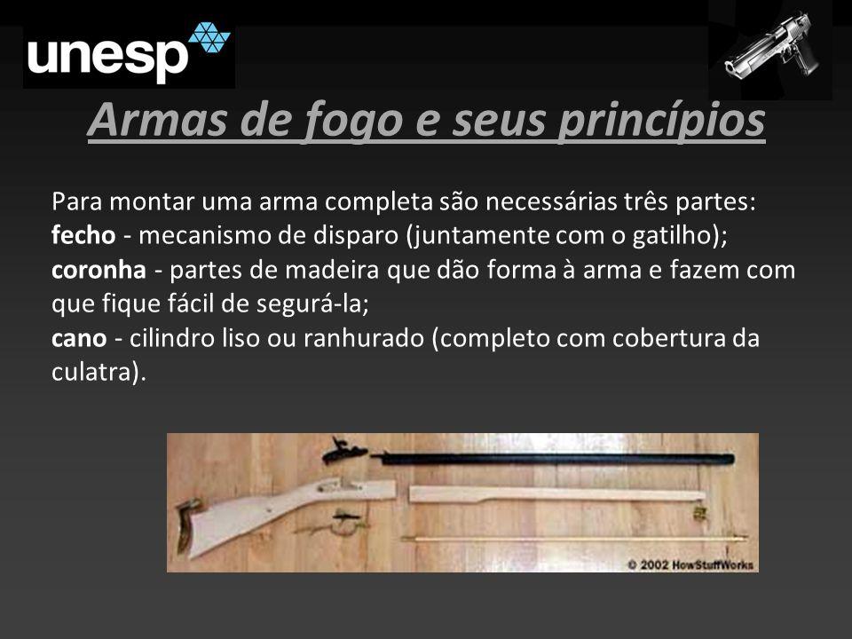 Armas de fogo e seus princípios