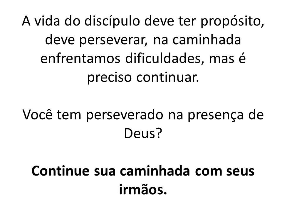 A vida do discípulo deve ter propósito, deve perseverar, na caminhada enfrentamos dificuldades, mas é preciso continuar.
