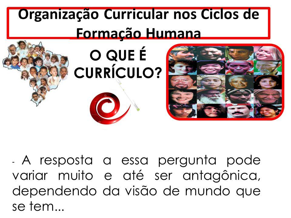 Organização Curricular nos Ciclos de Formação Humana