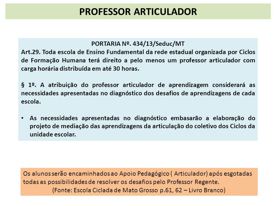 PROFESSOR ARTICULADOR