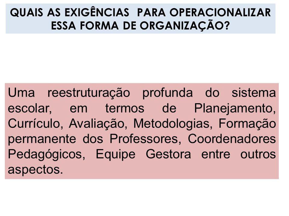 QUAIS AS EXIGÊNCIAS PARA OPERACIONALIZAR ESSA FORMA DE ORGANIZAÇÃO
