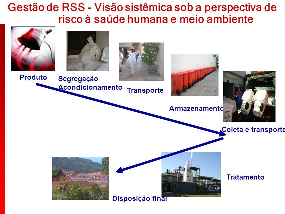 Gestão de RSS - Visão sistêmica sob a perspectiva de
