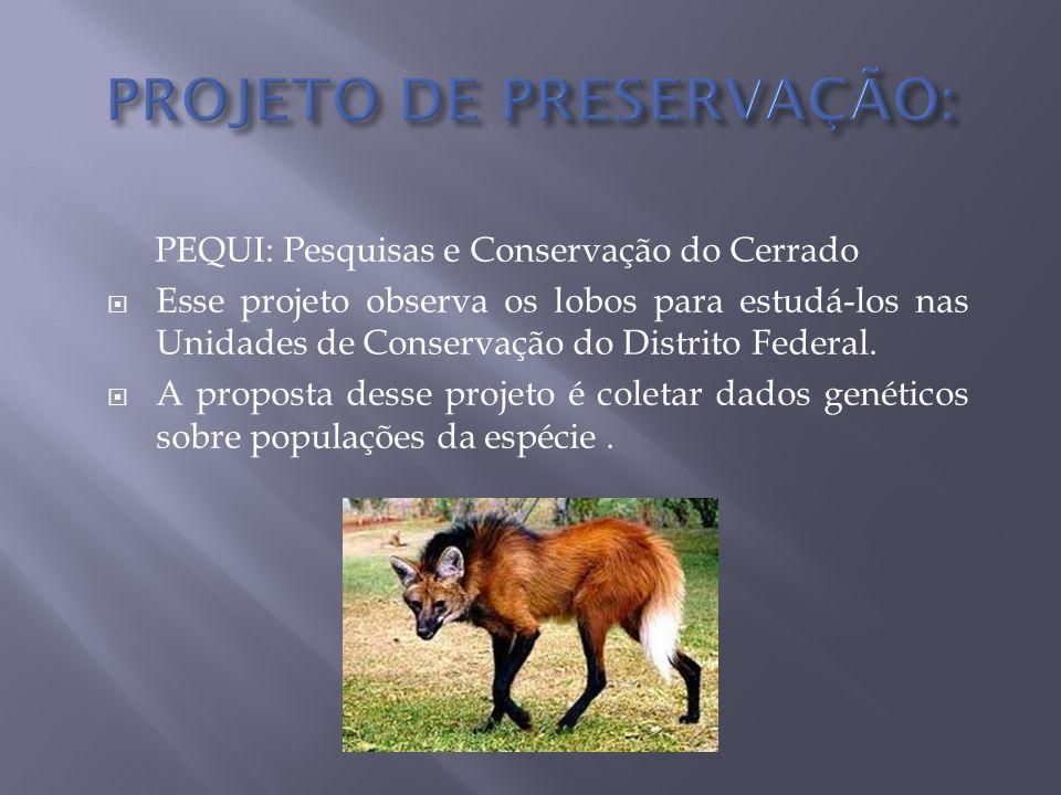 PROJETO DE PRESERVAÇÃO: