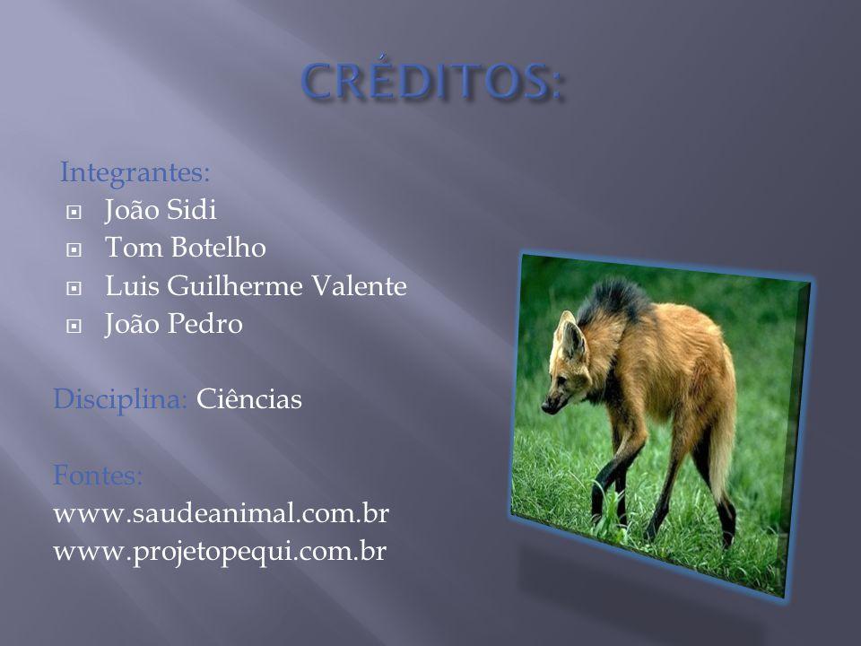 CRÉDITOS: Integrantes: João Sidi Tom Botelho Luis Guilherme Valente