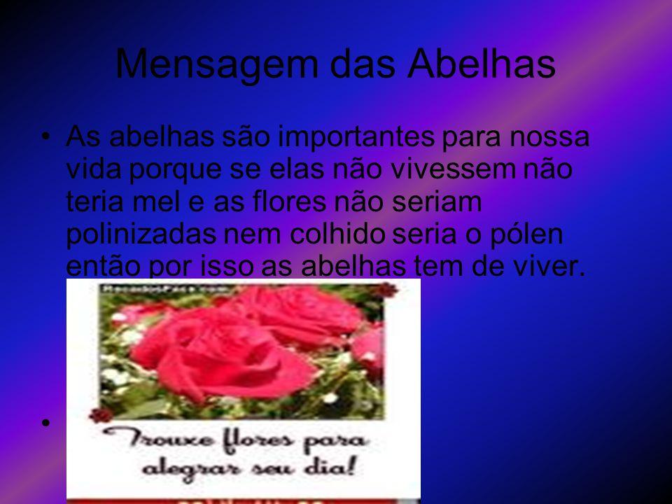 Mensagem das Abelhas