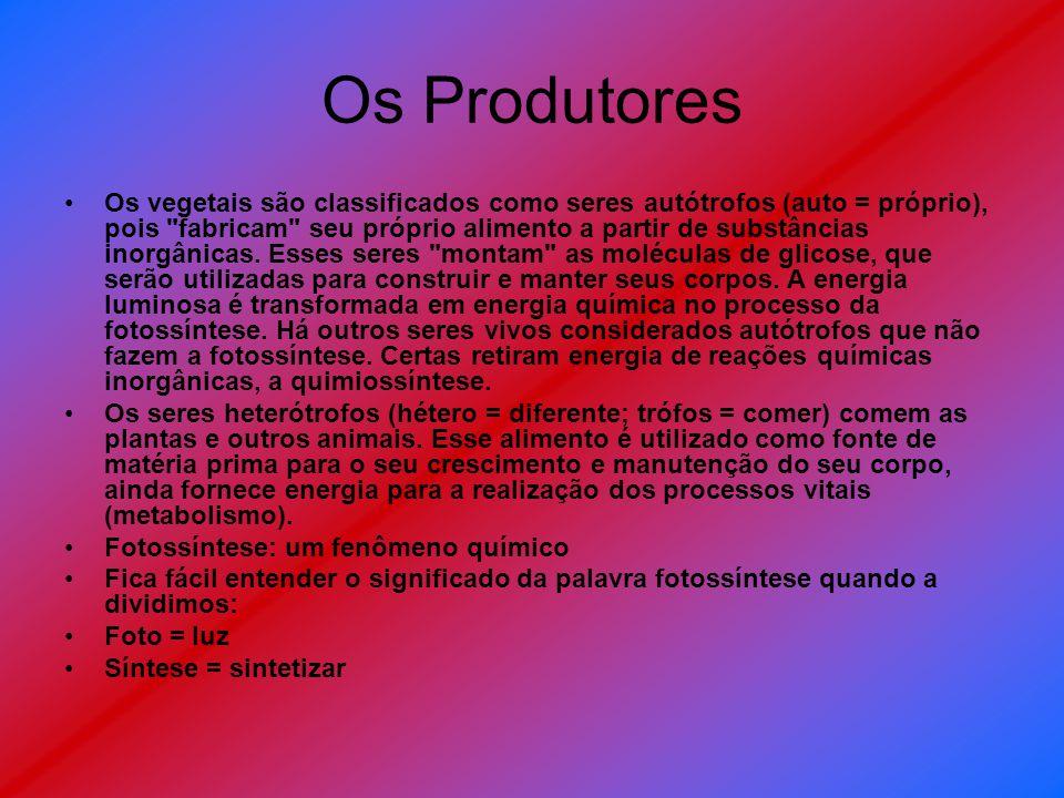 Os Produtores