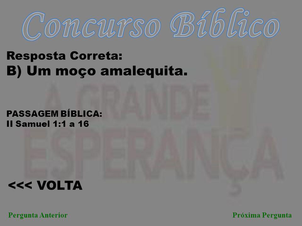 Concurso Bíblico B) Um moço amalequita. <<< VOLTA
