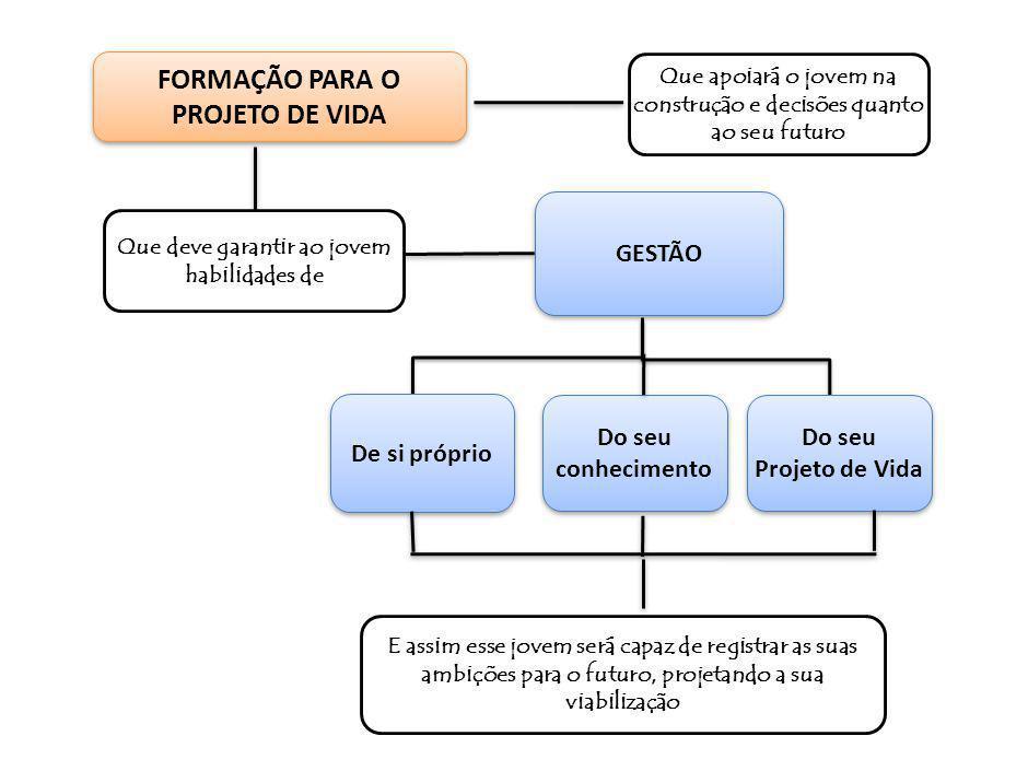 Os resultados da escola no PLANO DE AÇÃO obtidos dos PROGRAMAS DE AÇÃO