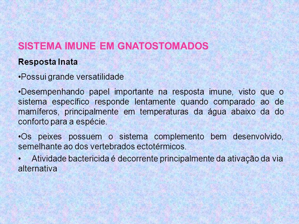 SISTEMA IMUNE EM GNATOSTOMADOS