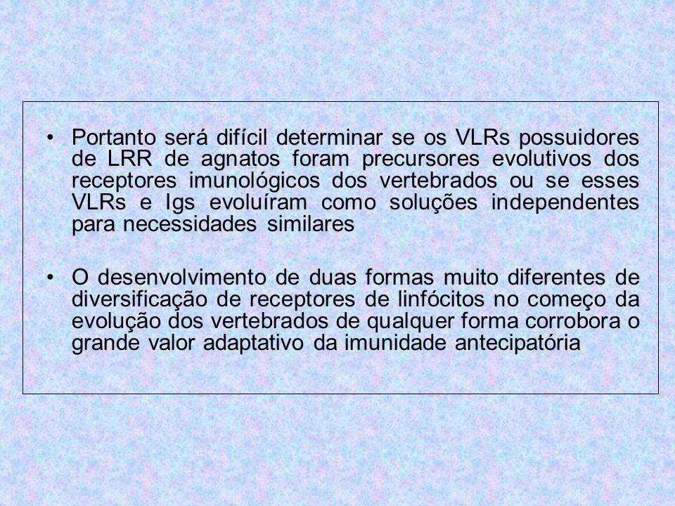Portanto será difícil determinar se os VLRs possuidores de LRR de agnatos foram precursores evolutivos dos receptores imunológicos dos vertebrados ou se esses VLRs e Igs evoluíram como soluções independentes para necessidades similares