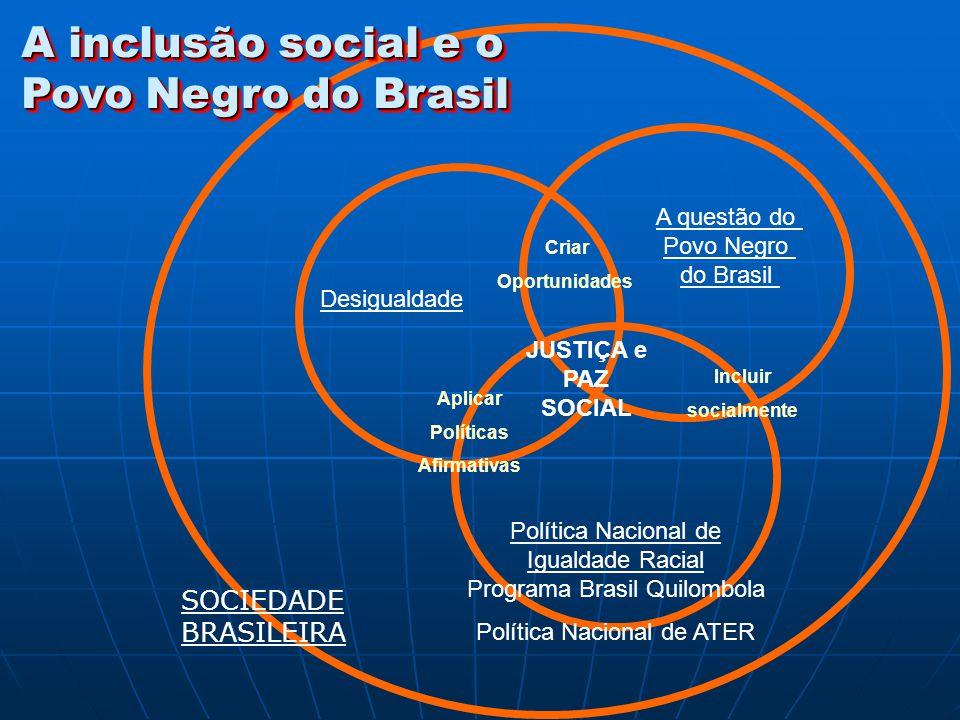 A inclusão social e o Povo Negro do Brasil