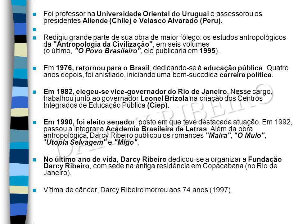 Foi professor na Universidade Oriental do Uruguai e assessorou os presidentes Allende (Chile) e Velasco Alvarado (Peru).