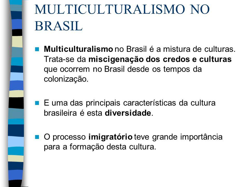 MULTICULTURALISMO NO BRASIL