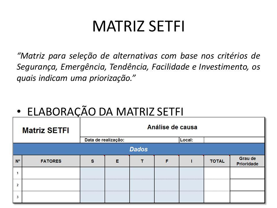 MATRIZ SETFI ELABORAÇÃO DA MATRIZ SETFI