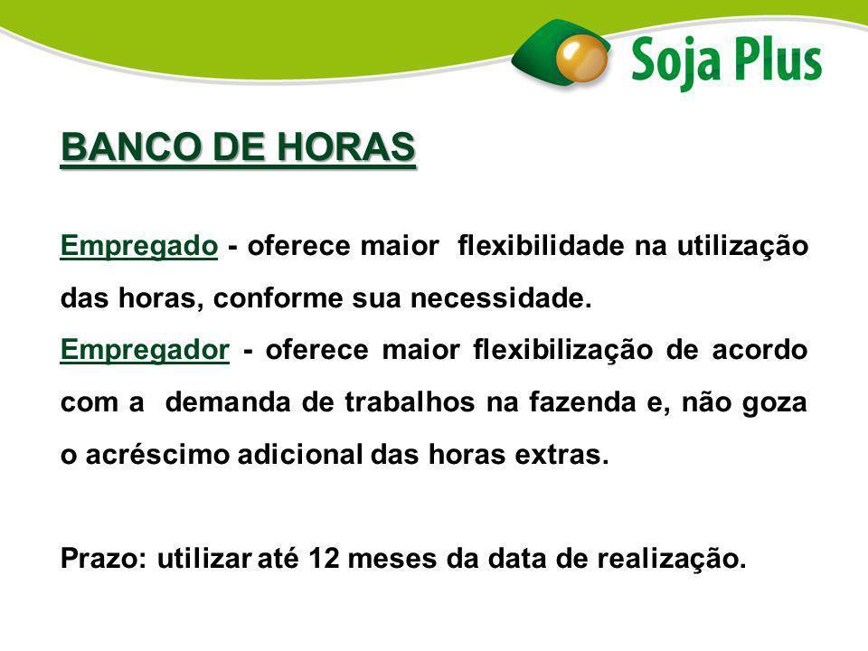 BANCO DE HORAS Empregado - oferece maior flexibilidade na utilização das horas, conforme sua necessidade.