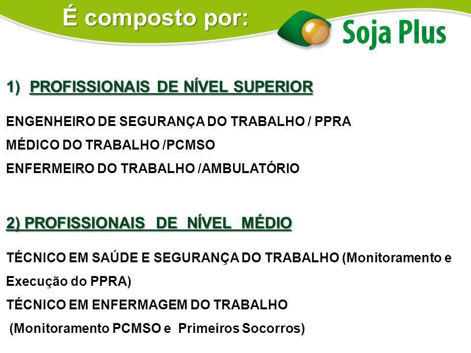 É composto por: PROFISSIONAIS DE NÍVEL SUPERIOR