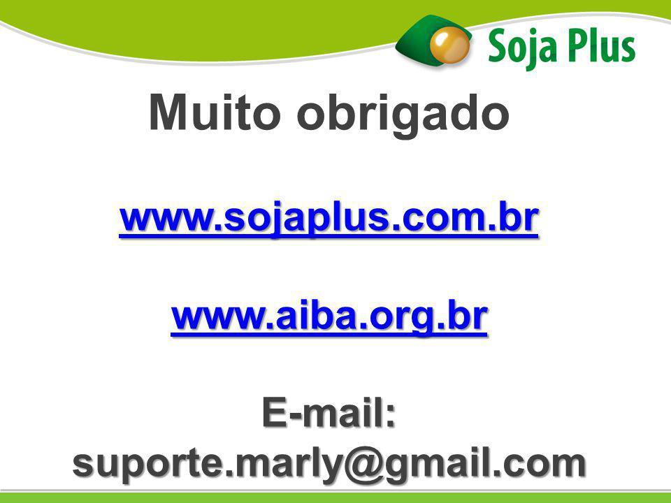 E-mail: suporte.marly@gmail.com