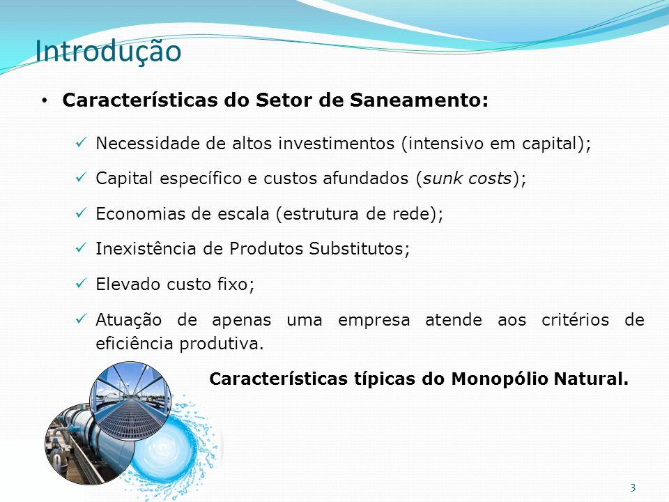 Introdução Características do Setor de Saneamento: