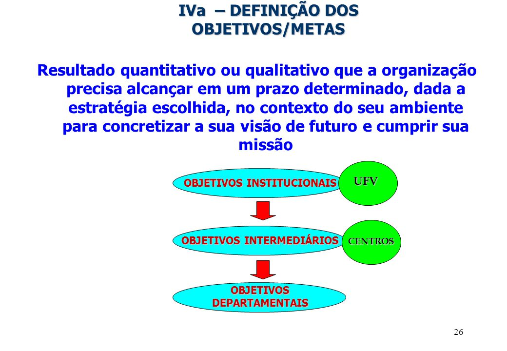 IVa – DEFINIÇÃO DOS OBJETIVOS/METAS