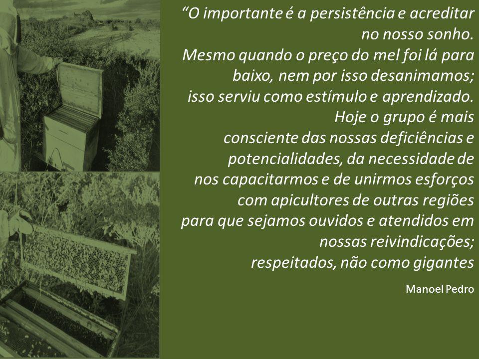 O importante é a persistência e acreditar no nosso sonho.