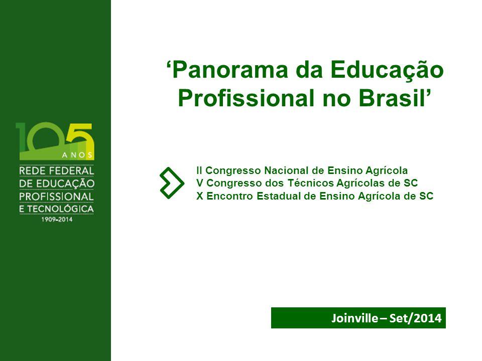 'Panorama da Educação Profissional no Brasil'