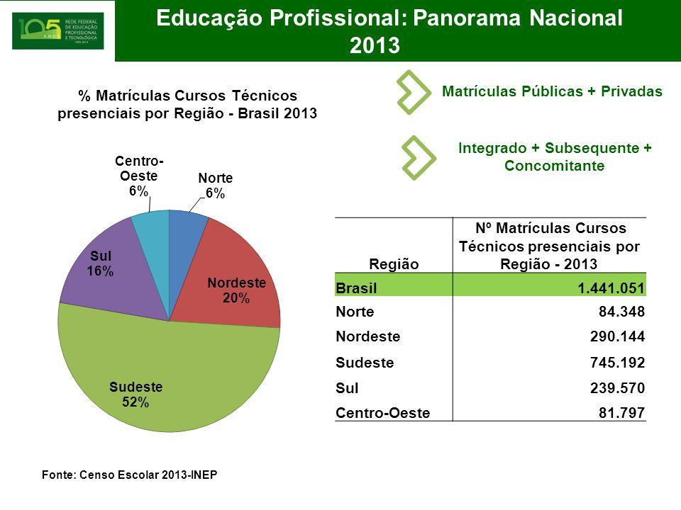 2013 Educação Profissional: Panorama Nacional
