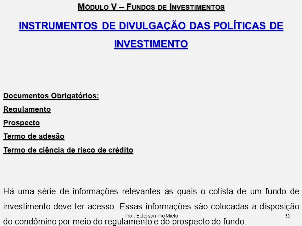 INSTRUMENTOS DE DIVULGAÇÃO DAS POLÍTICAS DE INVESTIMENTO