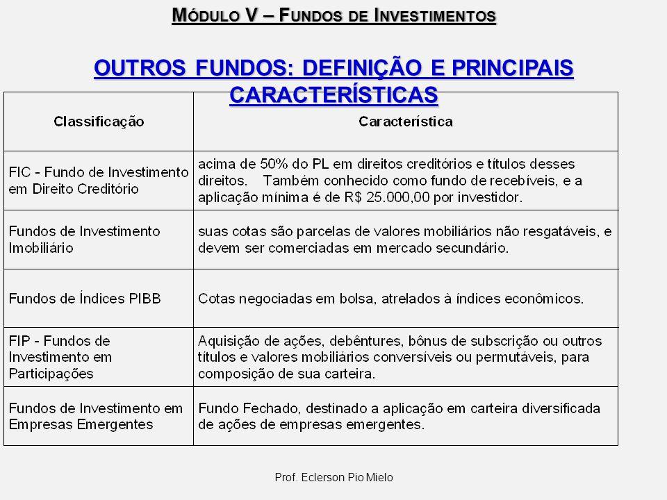 OUTROS FUNDOS: DEFINIÇÃO E PRINCIPAIS CARACTERÍSTICAS