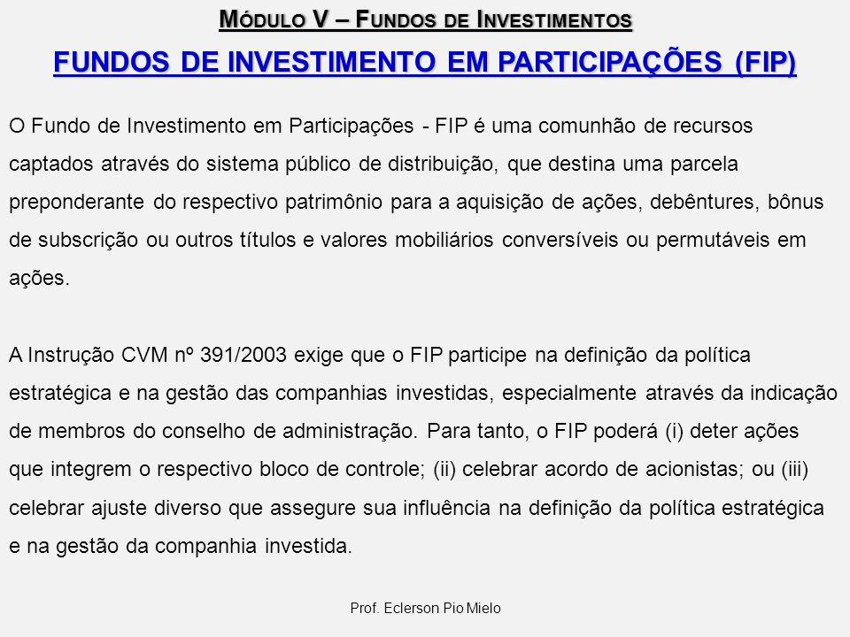 FUNDOS DE INVESTIMENTO EM PARTICIPAÇÕES (FIP)