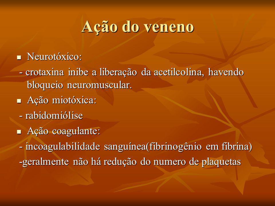 Ação do veneno Neurotóxico: