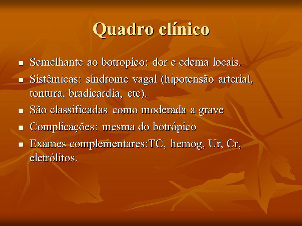Quadro clínico Semelhante ao botropico: dor e edema locais.