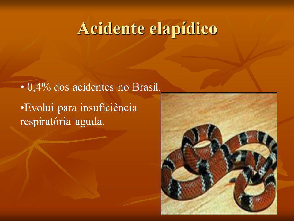 Acidente elapídico 0,4% dos acidentes no Brasil.