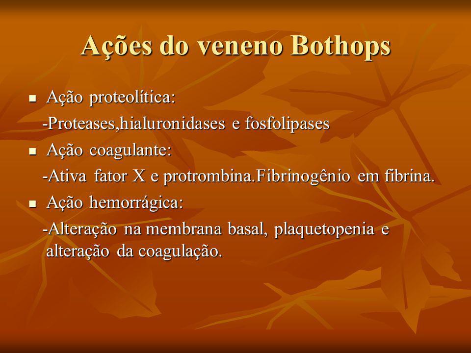 Ações do veneno Bothops