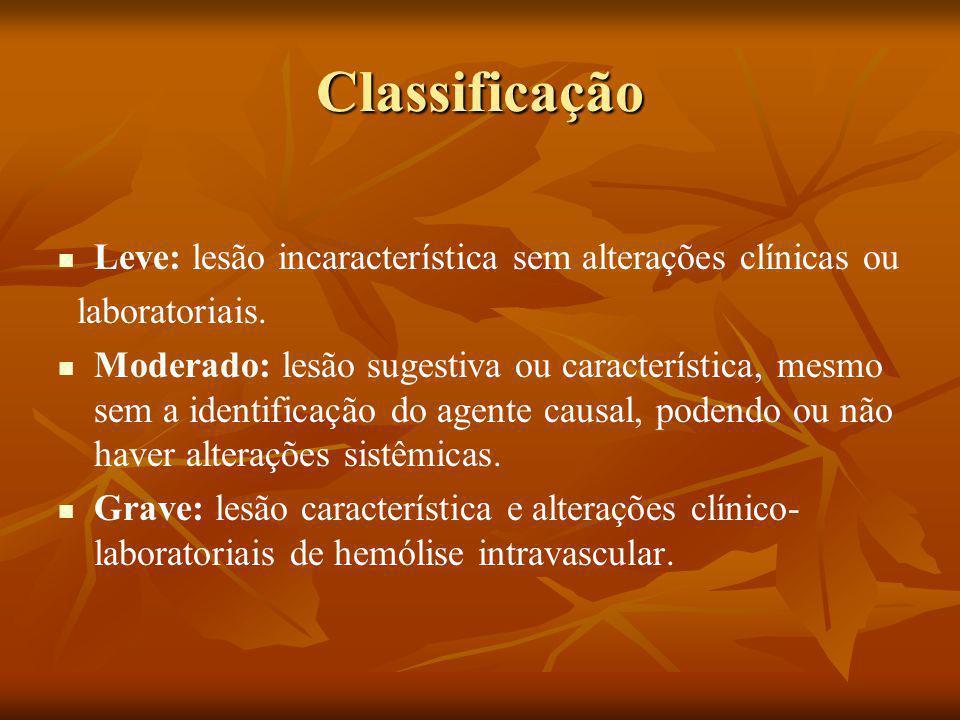 Classificação Leve: lesão incaracterística sem alterações clínicas ou