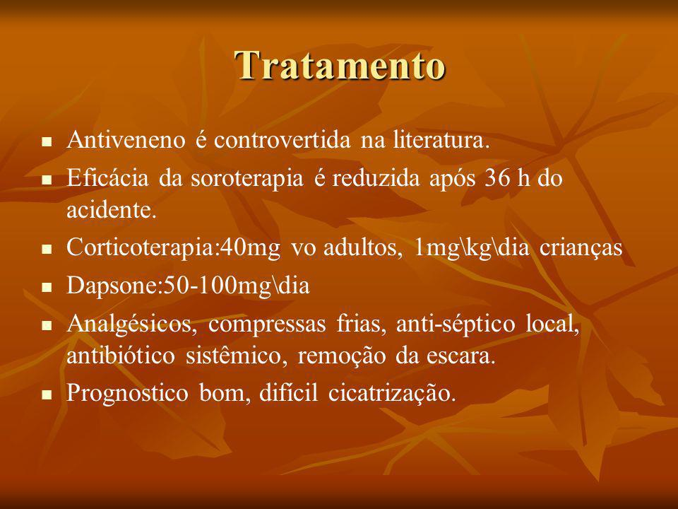 Tratamento Antiveneno é controvertida na literatura.