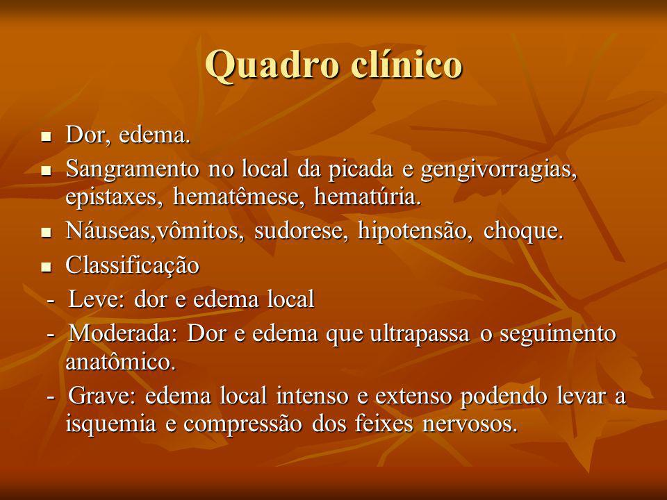 Quadro clínico Dor, edema.