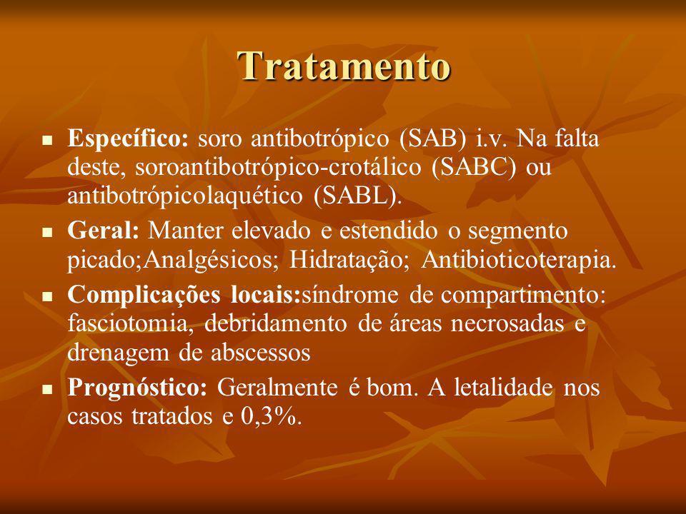 Tratamento Específico: soro antibotrópico (SAB) i.v. Na falta deste, soroantibotrópico-crotálico (SABC) ou antibotrópicolaquético (SABL).